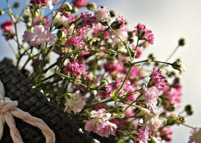 flowers101